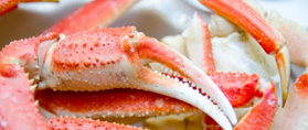 pince-king-crabe-bistrot-huitres